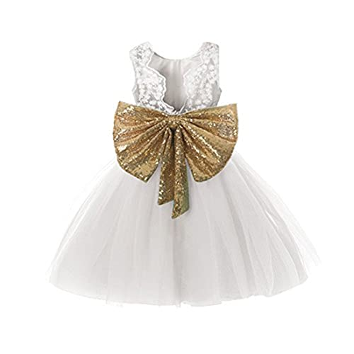 ef736d804f60 0-12 Years Baby Flower Girl Dress Wedding