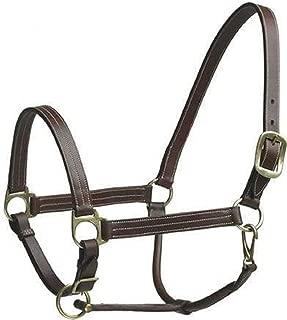 Camelot Basic Leather Adj Stable Halter w/Snap Pony