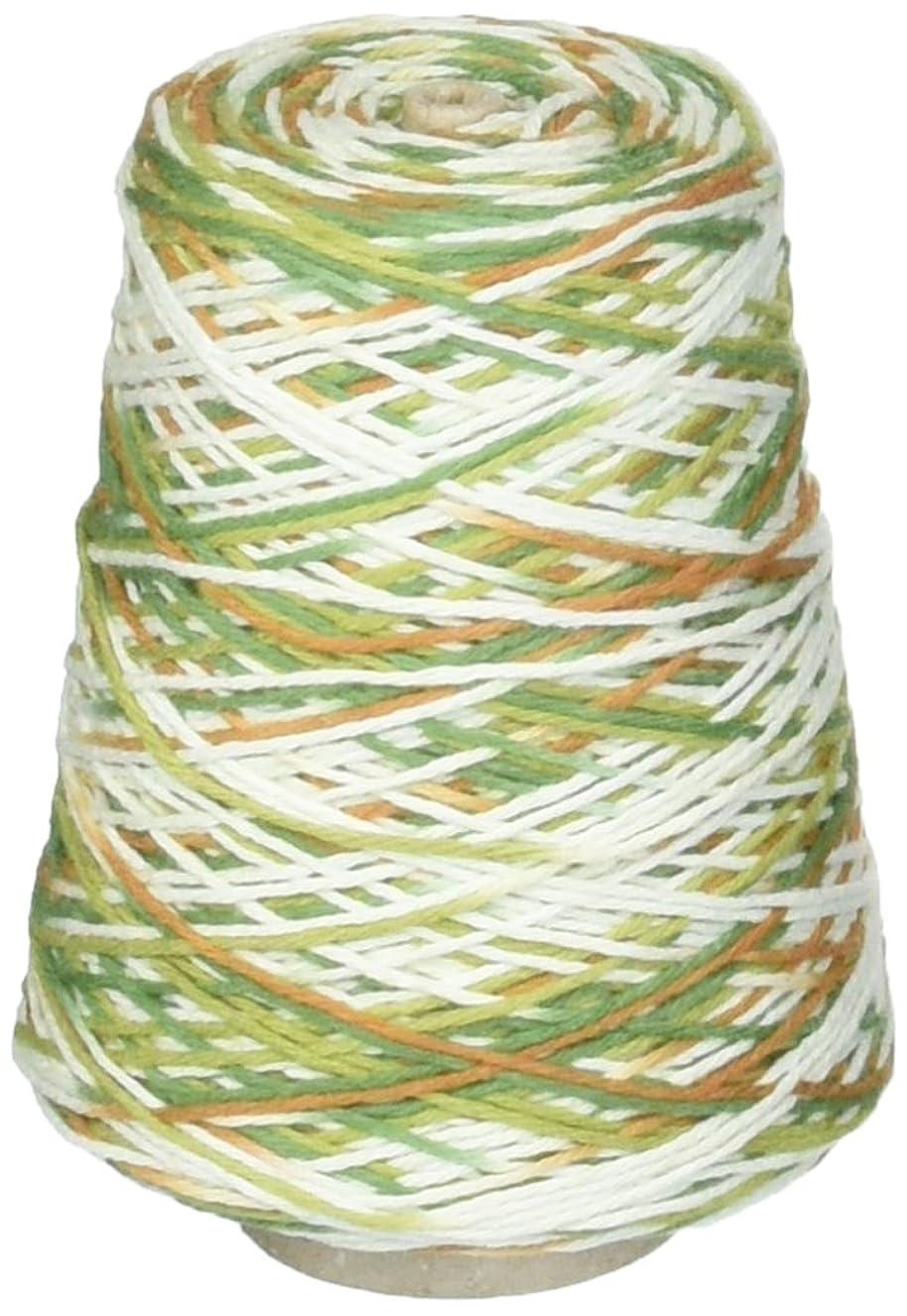 Premier Yarns 1032-12 Home Cotton Yarn - Multi Cone-Woodland