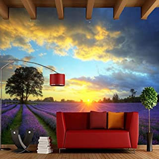 Wallpaper Modern Home Decoration Wallpaper Lavender Field Natural Landscape Art Murals for The Living Room Sofa Background Wallpaper,350Cmx245Cm