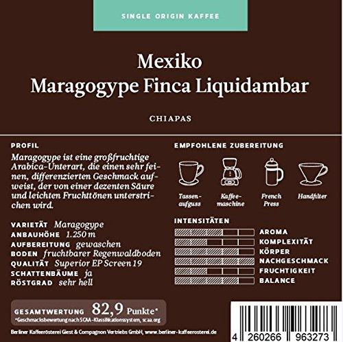 BKR | Kaffee | Mexiko | Maragogype Finca Liquidambar | Arabica | Single Origin 500g Bohne