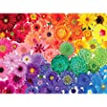 Genion Jigsaw Puzzles for Adults 1000 Piece - Rainbow Flowers Puzzle Game Large 1000 pcs Artwork Gifts for Adults Teens Families - 27.56'' x 19.69'' (Upgraded) from Genion