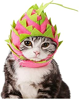 Hotumn Pet Dragon Fruit Dog Funny Hat Cat Hooded Halloween Costume Breathable Cap for Dog Birthday and Party