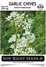 Best garlic chives seeds Reviews