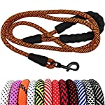 MayPaw Heavy Duty Rope Dog Leash, 1/2″ x 6FT Nylon Pet Leash, Soft Padded Handle Thick Lead Leash for Large Medium Dogs Small Puppy