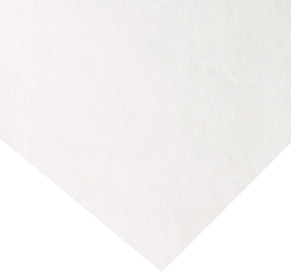 Thermoweb Heat'n Bond Lite Soft Stretch Iron-On Adhesive