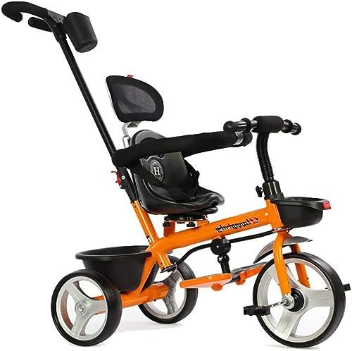 Moolo Tricycle Enfants Trike, Tricycle à Poussoir 2 en 1 avec poignée Parent et Design sécurisé - 15 Mois et Plus