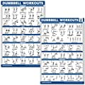"QuickFit 2 Pack Dumbbell Workout Exercise Poster - Volume 1 & 2 (Laminated, 18"" x 27"")"
