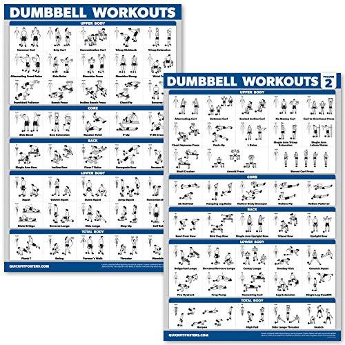 QuickFit Übungsposter für Hanteln, inkl. Übungstabelle für Bodybuilding 45,7 x 68,6 cm, 2 Stück, Volumen 1 und 2, laminiert, 18