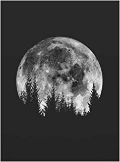 Minimalist Full Moon Poster Art Black White Moon Phases Prints Solar System Canvas Picture Painting Decoration for Living Room,50x70cm No Frame,02