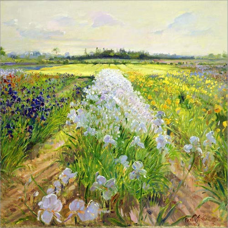 el mas reciente Posterlounge Cuadro de metacrilato 60 60 60 x 60 cm  Flower Field de Timothy Easton Bridgeman Images  100% garantía genuina de contador