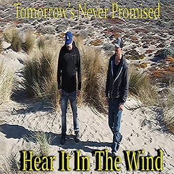 Hear It in the Wind