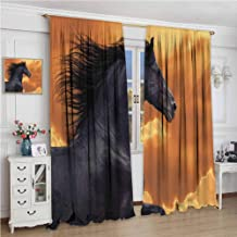 GUUVOR Animal Decor Blackout Curtain Portrait of Galloping Frisian Horse with Warm Hot Sun Rays Intensity Honor Grace Theme 2 Panel Sets W96 x L96 Inch Black Orange