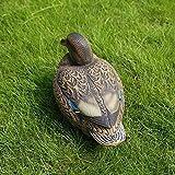 IPOTCH Tierfigur Ente aus Kunststoff Vogel Duck Teich Schwimmente, echter Hingucker im Teich