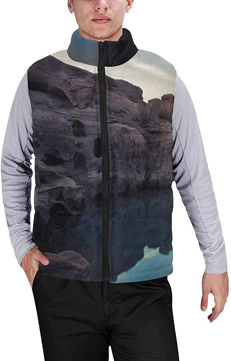 InterestPrint Men's Soft Stand Collar Jacket for Fishing Hiking Cycling Dinosaurs at Blue Night