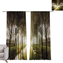 Andrea Sam Bedroom Curtains Forest,Water Channel Foggy Weather Trees Grass City Street at Winter Night Mystery,White Green Brown W108 x L84 inch,for Kitchen Windows