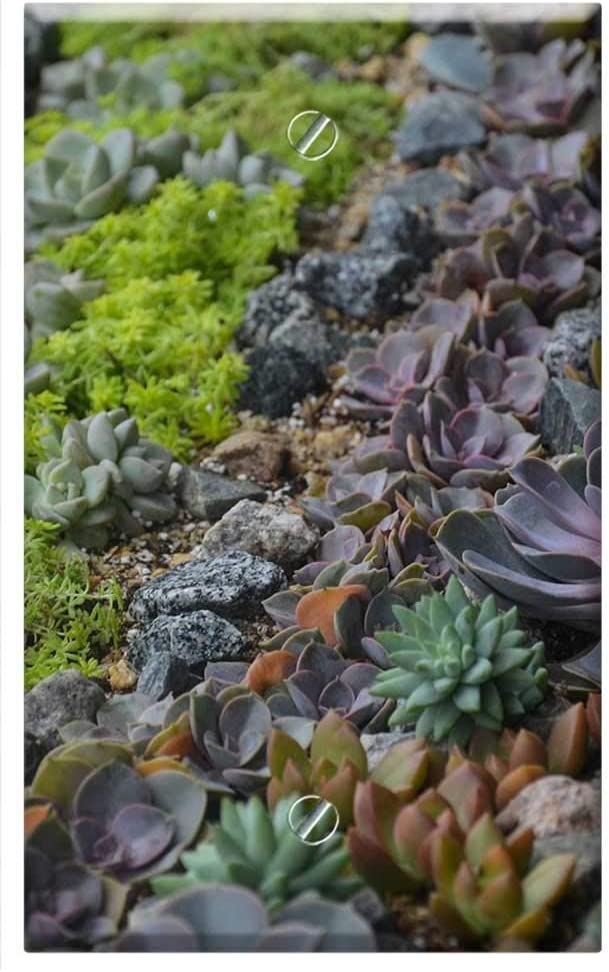 Single-Gang Blank Ranking TOP18 Fashion Wall Plate Cover Flow Plants Succulent - Plant