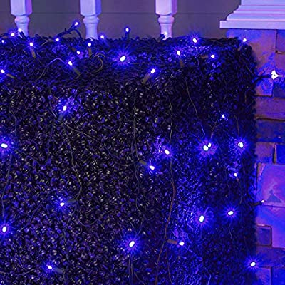 Wintergreen Lighting LED Net Lights Outdoor LED Holiday Lights Net, Outdoor Decorative Lights Christmas Net Lights, Hedge Christmas Lights, Set of 100