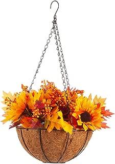 Best mum hanging baskets Reviews