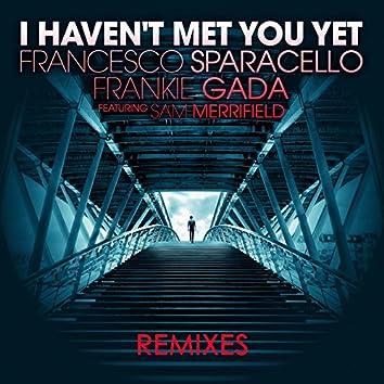 I Haven't Met You Yet (Remixes) [feat. Sam Merrifield]
