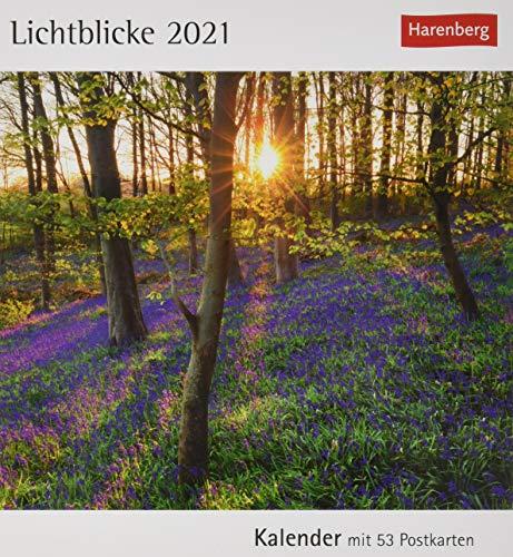 Lichtblicke Postkartenkalender 2021 - Tischkalender mit Wochenkalendarium - 53 perforierte Postkarten zum Heraustrennen - zum Aufstellen oder Aufhängen - Format 12 x 15 cm