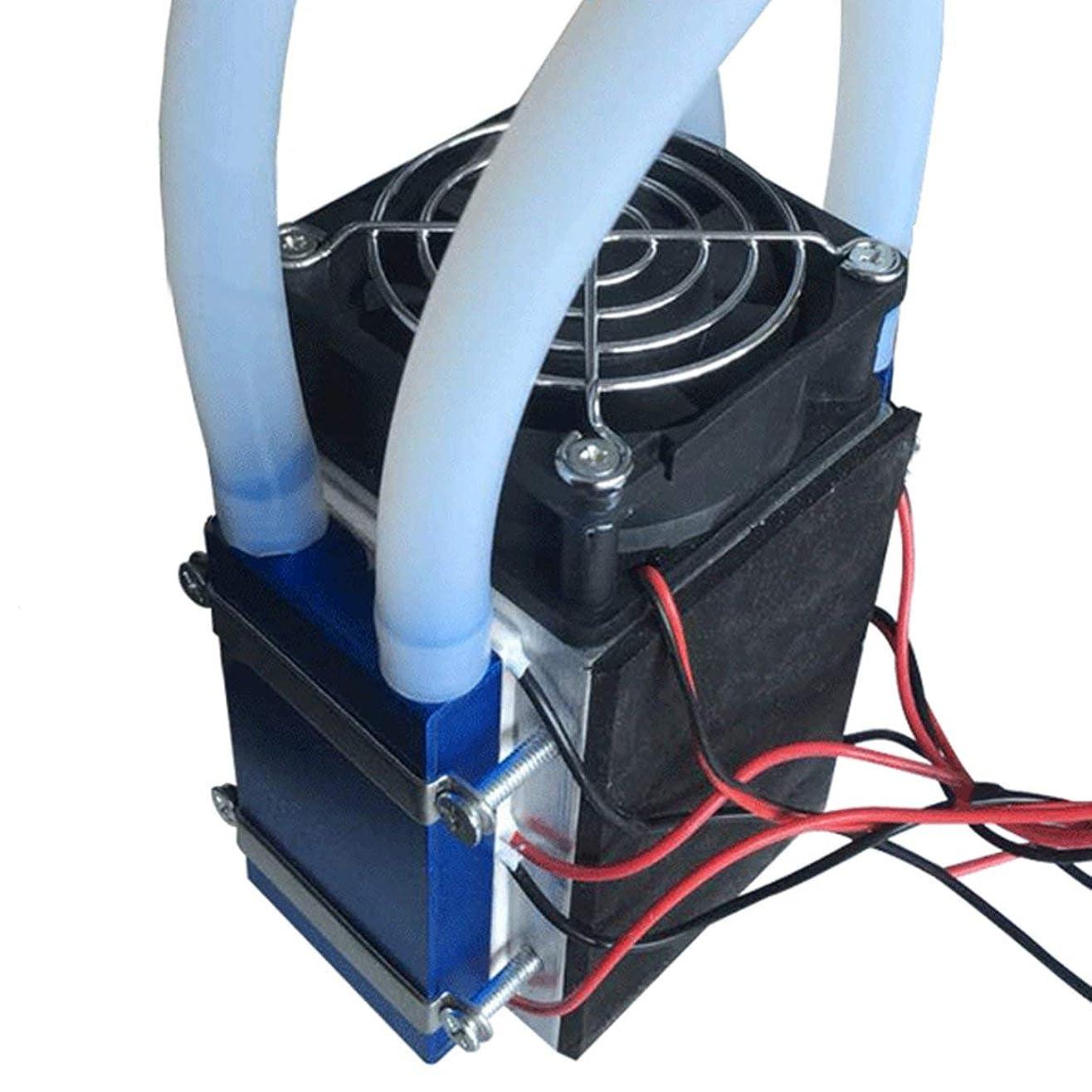 資本主義寛大な卵MolySun ペルチェ熱電冷蔵庫12V 576W 4チップTEC1-12706 DIY冷凍空気冷却装置熱電クーラー ブラック