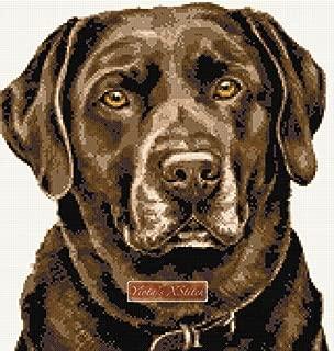 Chocolate Labrador (v2) Counted Cross Stitch kit