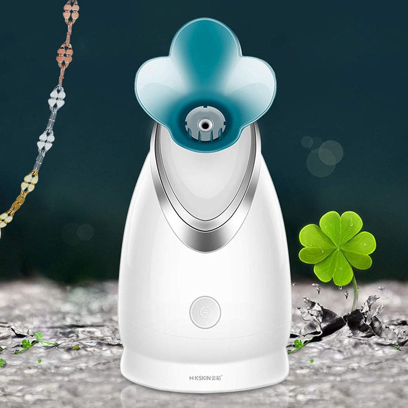 どちらも上流の使い込むLVESHOP 蒸気面イオンホット蒸し顔機家庭用噴霧器美容機器水道メーター加湿器 (色 : T2)