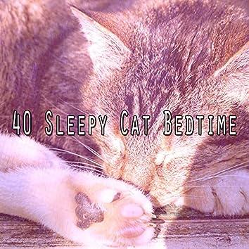 40 Sleepy Cat Bedtime