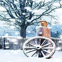 GladsBuyチャーミング雪風景10' x 10'デジタル印刷写真バックドロップクリスマステーマ背景yha-081
