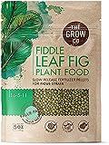 Fiddle Leaf Fig Tree Plant Food - Slow Release Fertilizer Pellets for...