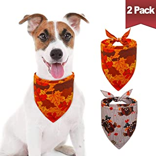 thanksgiving dog bandanas
