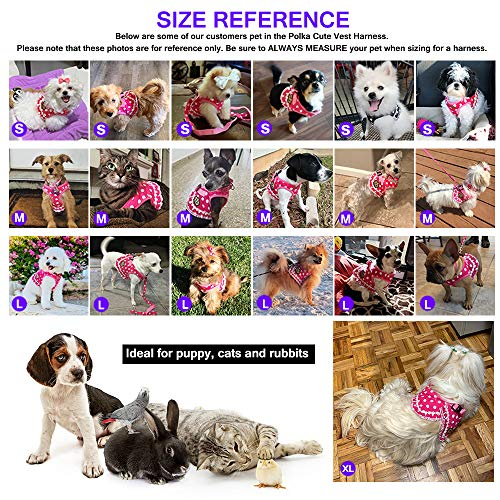 Cute Small Dog Harness, Ladies Polka Dots Dog Vest Harness Set with Pink Leash and Bowknot Collar, 3 in 1 Girl Style Vest Harness Set for Puppy and Cat (L, Pink)