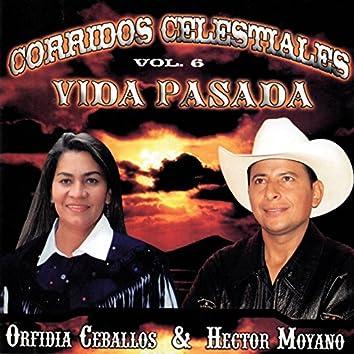 Corridos Celestiales, Vol. 6: Vida Pasada