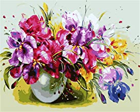 Painting by Numbers DIY Oil Painting for Adult Phalaenopsis, Flowers Canvas Print Wall Art Decoration 40X50Cm