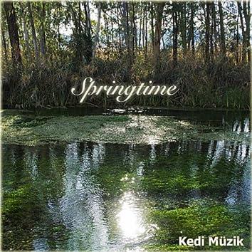 Springtime - Single