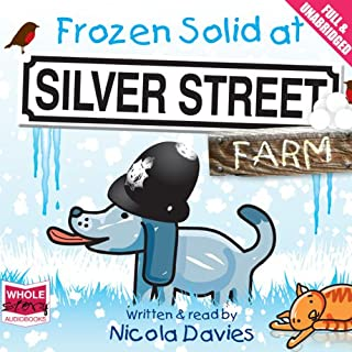Frozen Solid at Silver Street Farm cover art