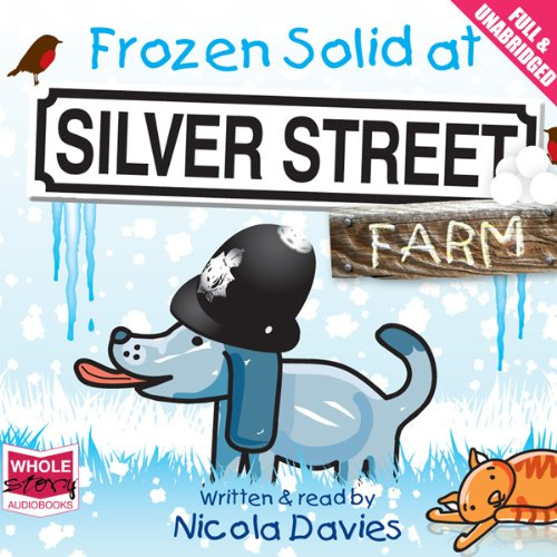 Frozen Solid at Silver Street Farm audiobook cover art