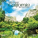 California Wild & Scenic 2022 7 x 7 Inch Monthly Mini Wall Calendar, USA United States of America Pacific West State Nature