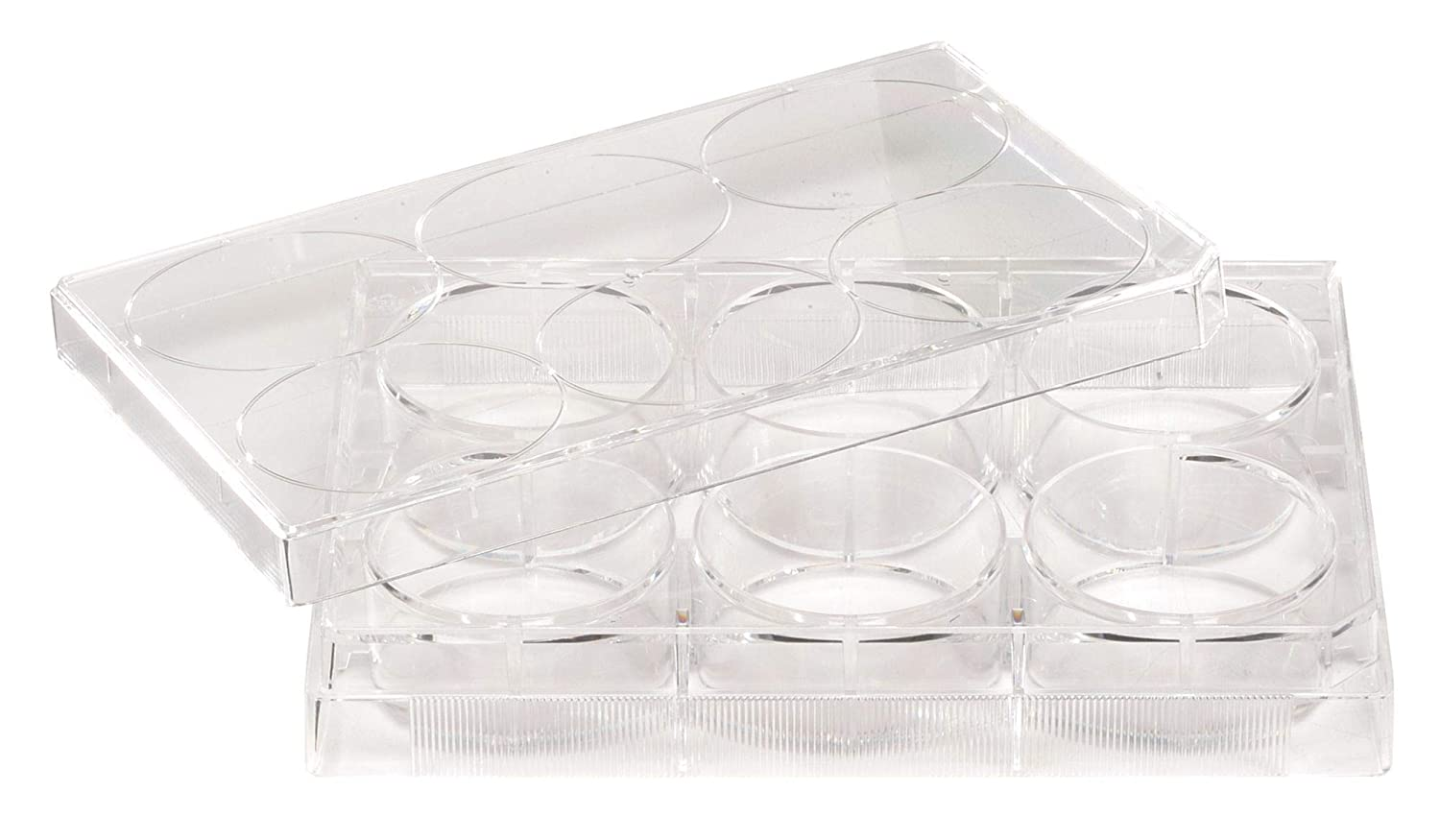Celltreat 229512 12 Sale Max 40% OFF item Well Non-treated Bottom Plate Lid Flat with