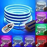 XUNATA 25m Luce al Neon Flessibile Striscia LED RGB 220V con Telecomando 24 tasti, Kit Luce 5050 Trasformatore Impermeabile 1500W