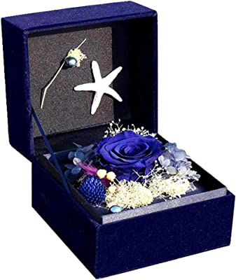 HY&PPJQ Everlasting Flower,Creative Gift Christmas Valentine Rose Gift Gift Box Dried Flower Finished Product Little Prince Series-A