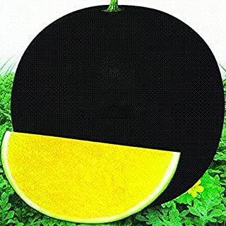 Hot Sale Hybrid Black Skin Round Shape Yellow Meat Seedless Watermelon Seeds, 10 Seeds, Simple pack, 12% Sugar Contained