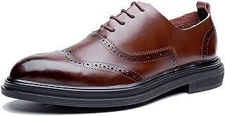 メンズシューズ メンズシューズ 革靴 オックスフォードシューズ フラットヒール ソリッドカラー レースアップ ブローグパターン カジュアルシューズ 紳士靴 通気性 (Color : 褐色, サイズ : 24 CM)