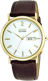 Citizen Men's Eco-Drive' Watch with Leather Strap