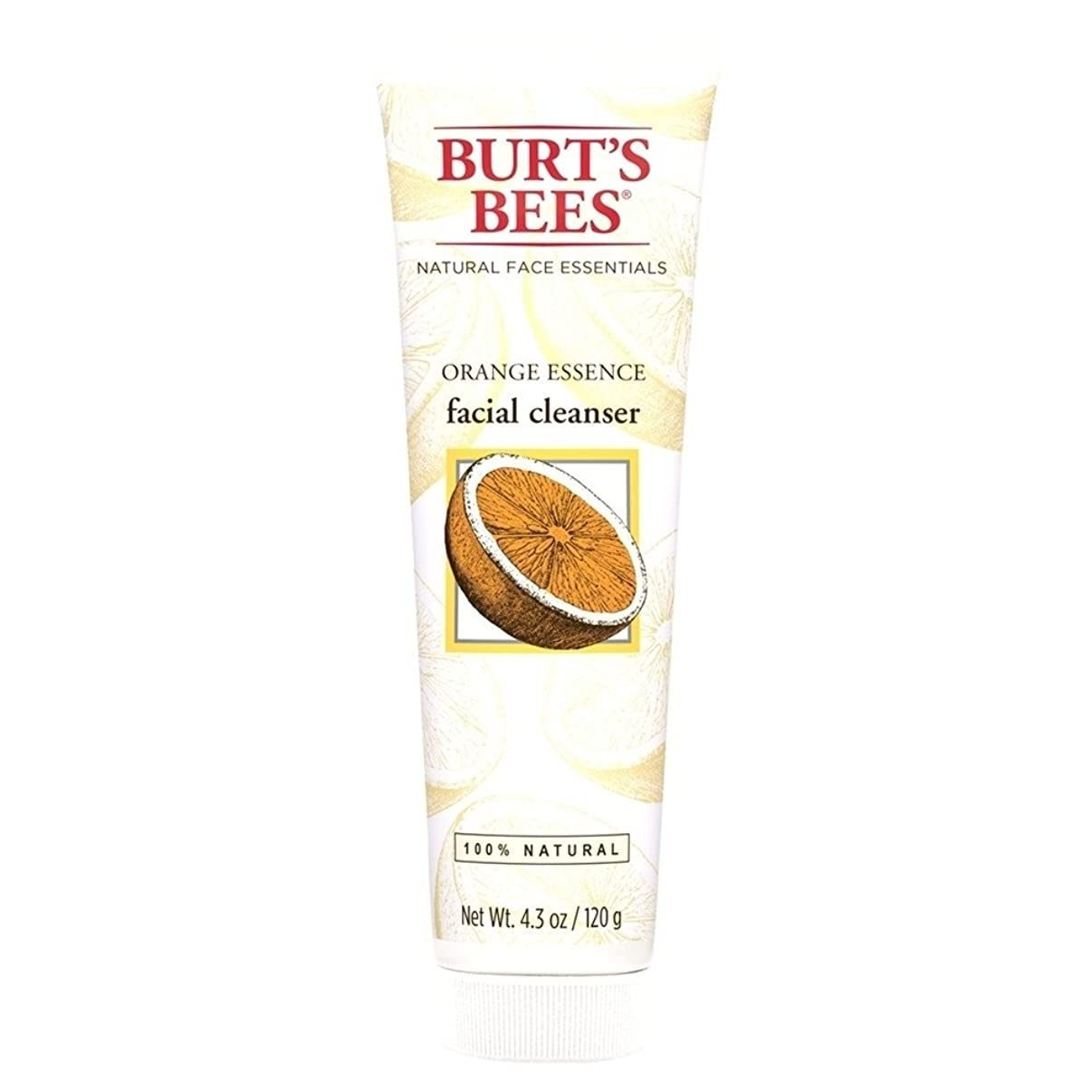 汚すグリーンバック姓バーツビーオレンジエッセンス洗顔料、125グラム (Burt's Bees) - Burt's Bees Orange Essence Facial Cleanser, 125g [並行輸入品]