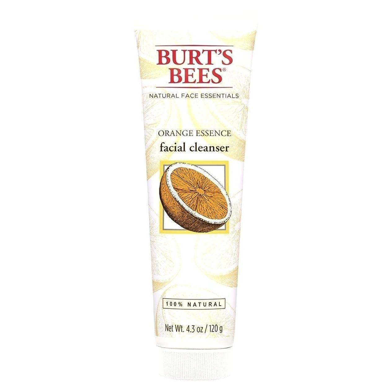 証明するカセット窓を洗うバーツビーオレンジエッセンス洗顔料、125グラム (Burt's Bees) - Burt's Bees Orange Essence Facial Cleanser, 125g [並行輸入品]