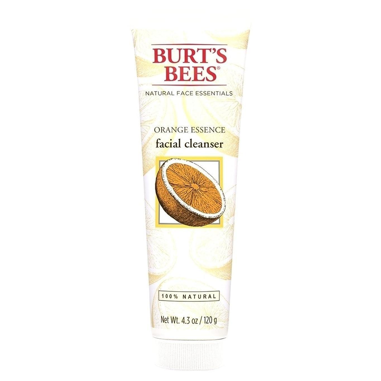 同等のシャンプーインポートバーツビーオレンジエッセンス洗顔料、125グラム (Burt's Bees) - Burt's Bees Orange Essence Facial Cleanser, 125g [並行輸入品]