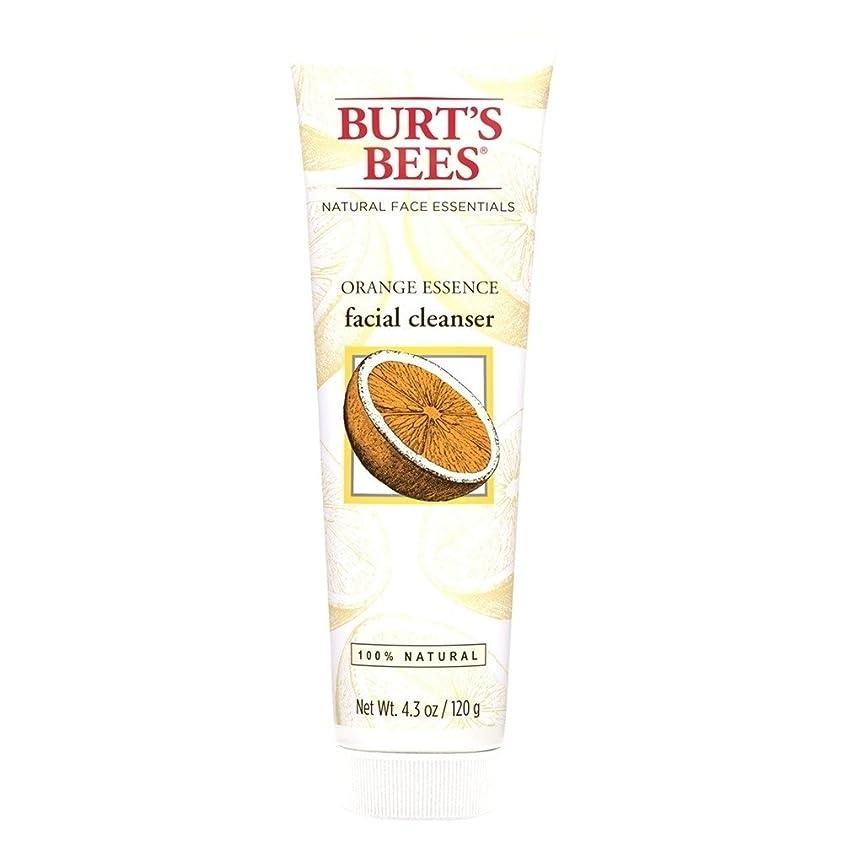 腕群がるモディッシュバーツビーオレンジエッセンス洗顔料、125グラム (Burt's Bees) - Burt's Bees Orange Essence Facial Cleanser, 125g [並行輸入品]