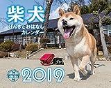 2019カレンダー 柴犬げんきな おはなしカレンダー ([カレンダー])